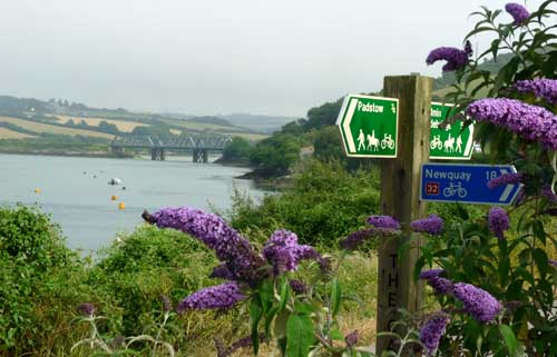 touring cornwall in a campervan - Padstow camel trail